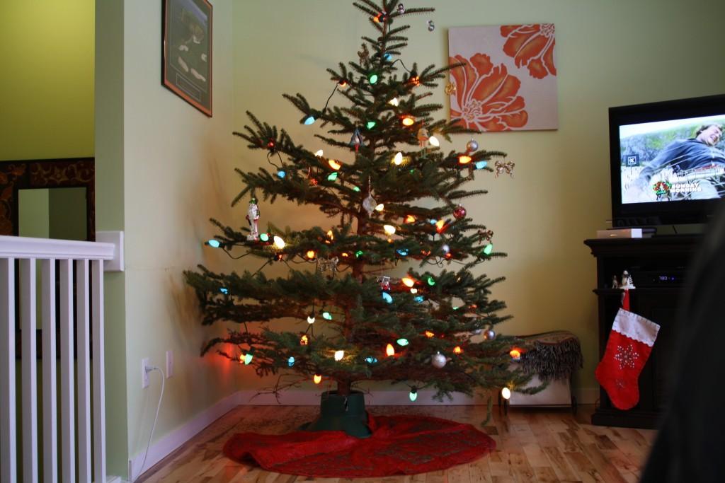 2010 - Tree