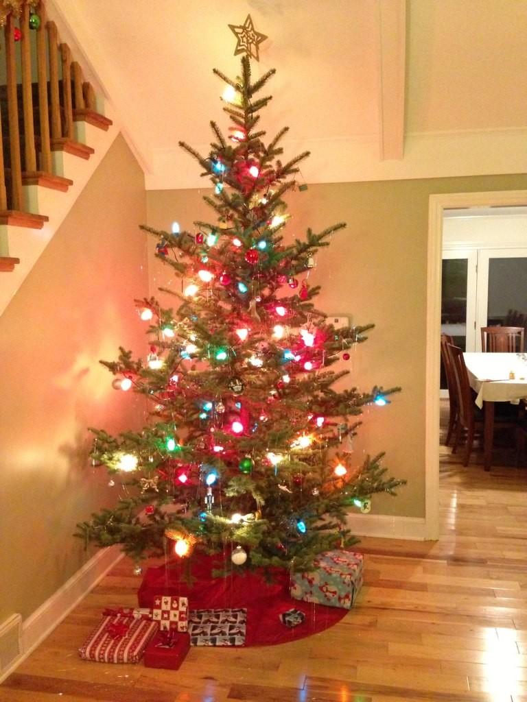 2012 - Tree